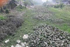 Ichamati-River-Pabna-Bangladesh-as-of-January-2021-33