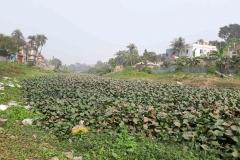 Ichamati-River-Pabna-Bangladesh-as-of-January-2021-5