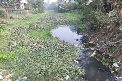 Ichamati-River-Pabna-Bangladesh-as-of-January-2021-8