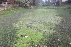 Ichamati-River-Pabna-Bangladesh-as-of-January-2021-9