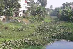 Ichamati-River-Pabna-Bangladesh-December-2020-10