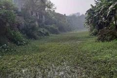 Ichamati-River-Pabna-Bangladesh-December-2020-13