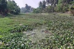 Ichamati-River-Pabna-Bangladesh-December-2020-15