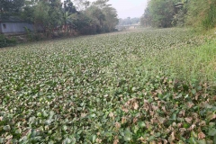 Ichamati-River-Pabna-Bangladesh-December-2020-20