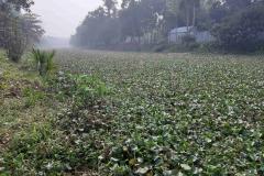 Ichamati-River-Pabna-Bangladesh-December-2020-23