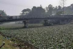 Ichamati-River-Pabna-Bangladesh-December-2020-3
