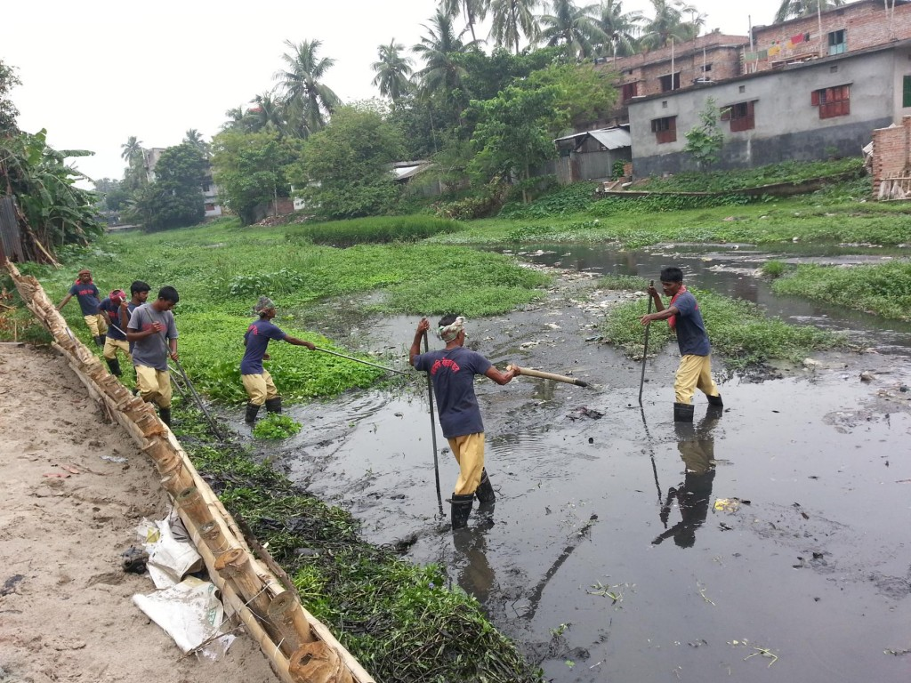 Cleaning on June 2015