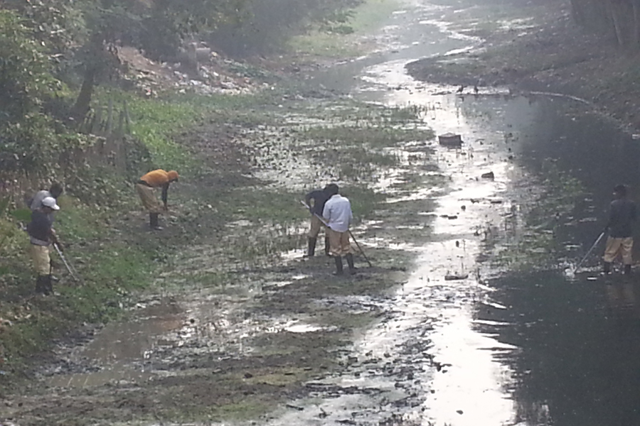 Cleaning on January 2017